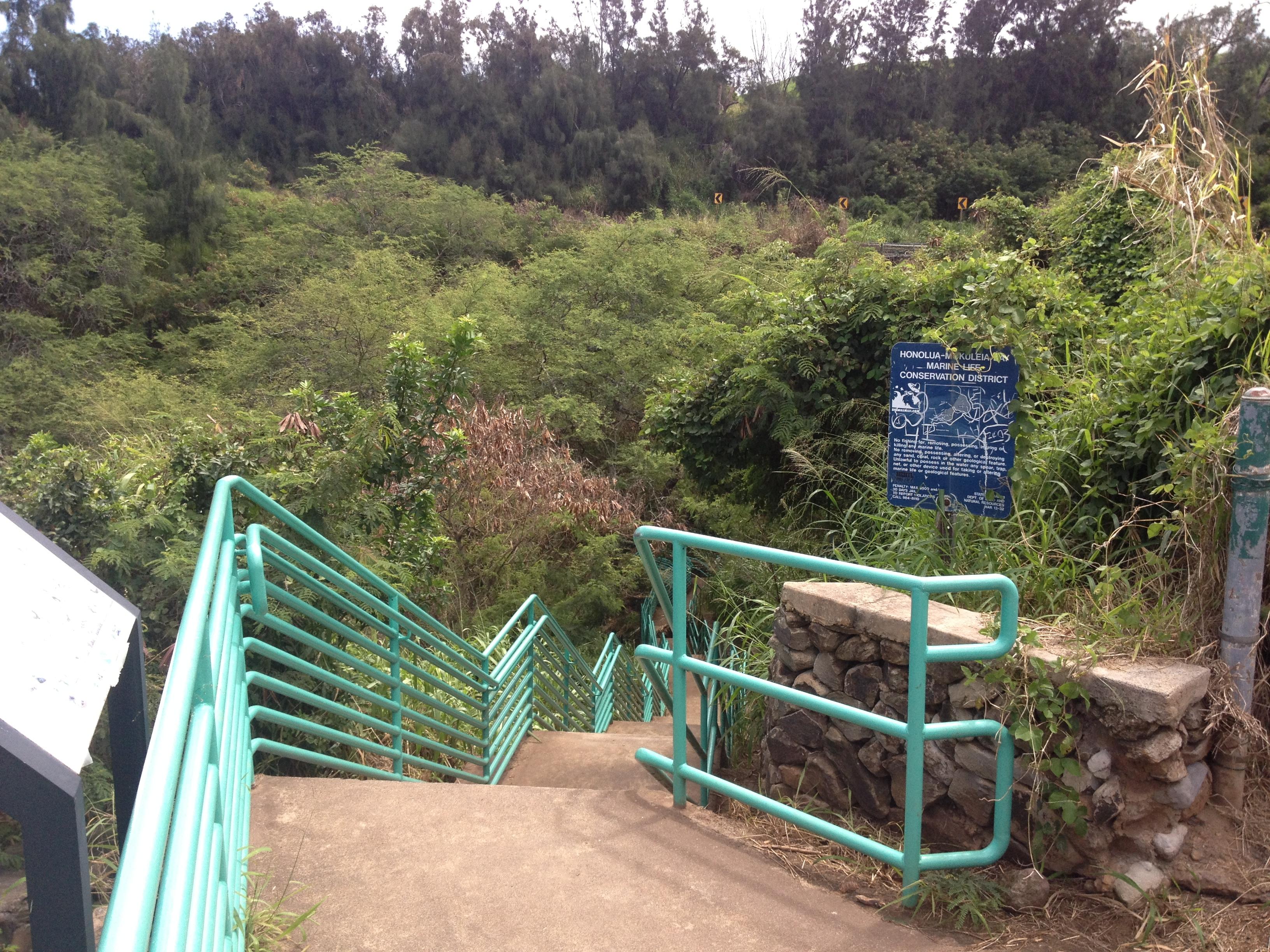 Honolua Mokuleia Bay