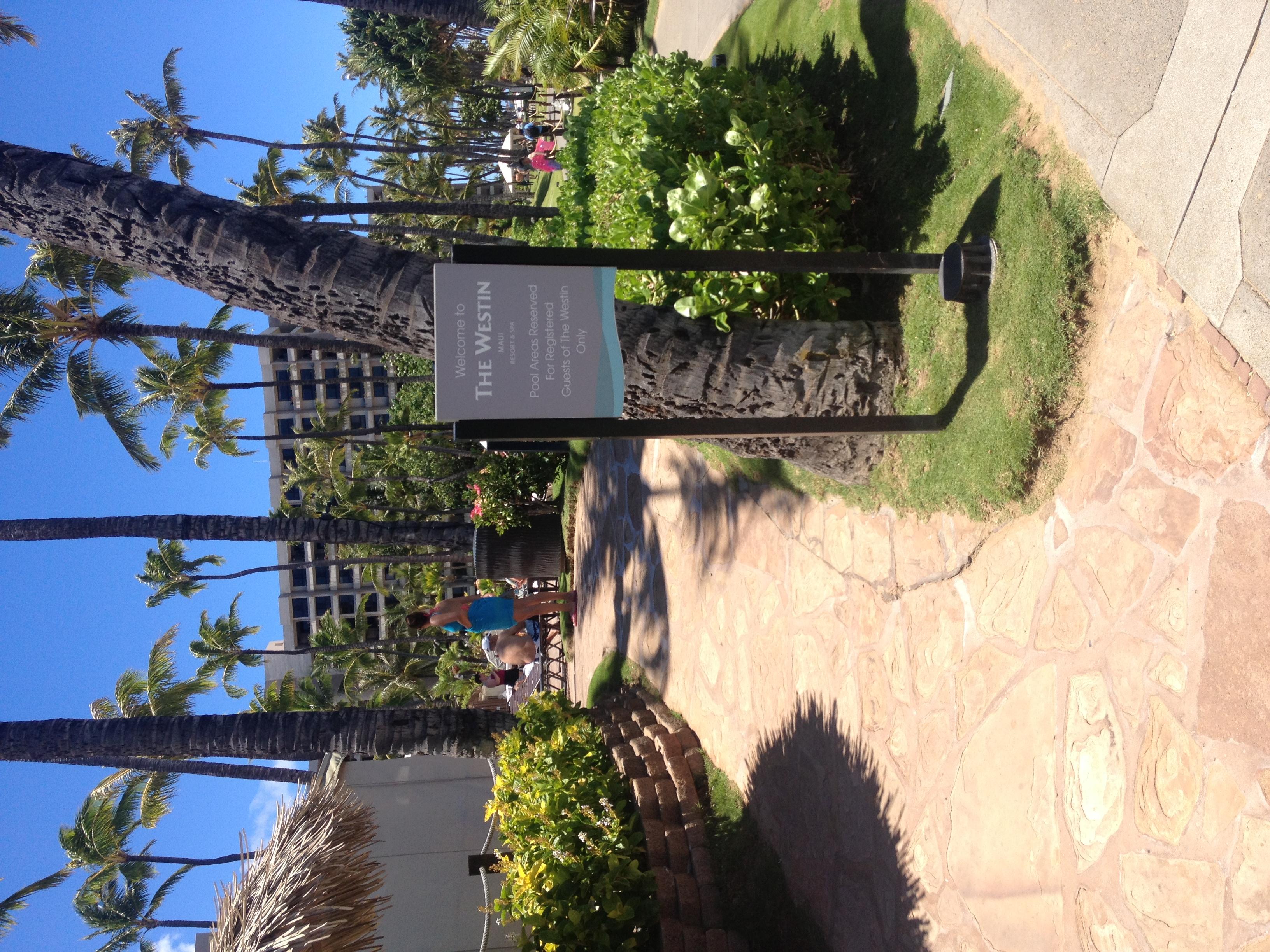 Alii Maui Westin