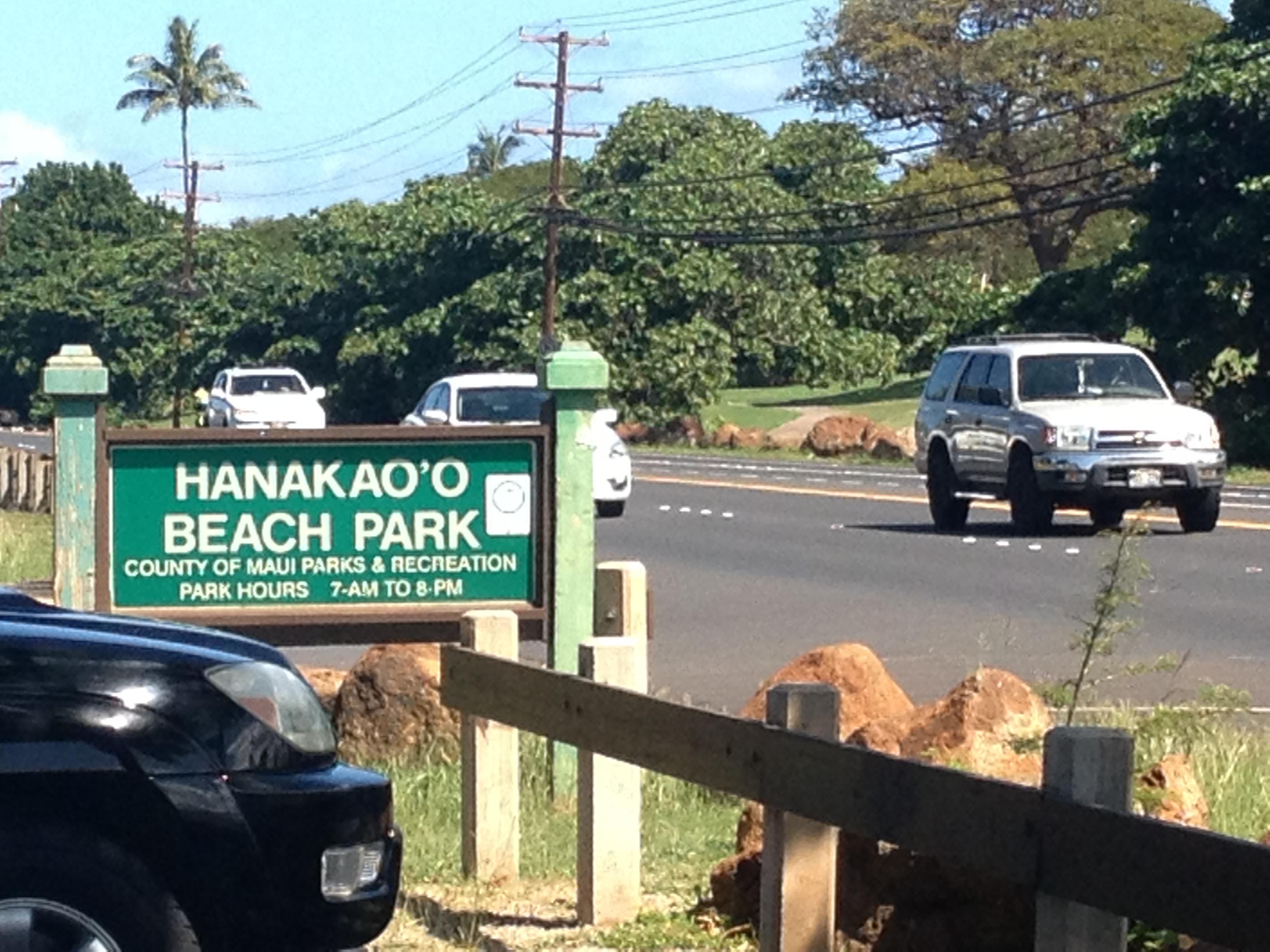 Hanakaoo
