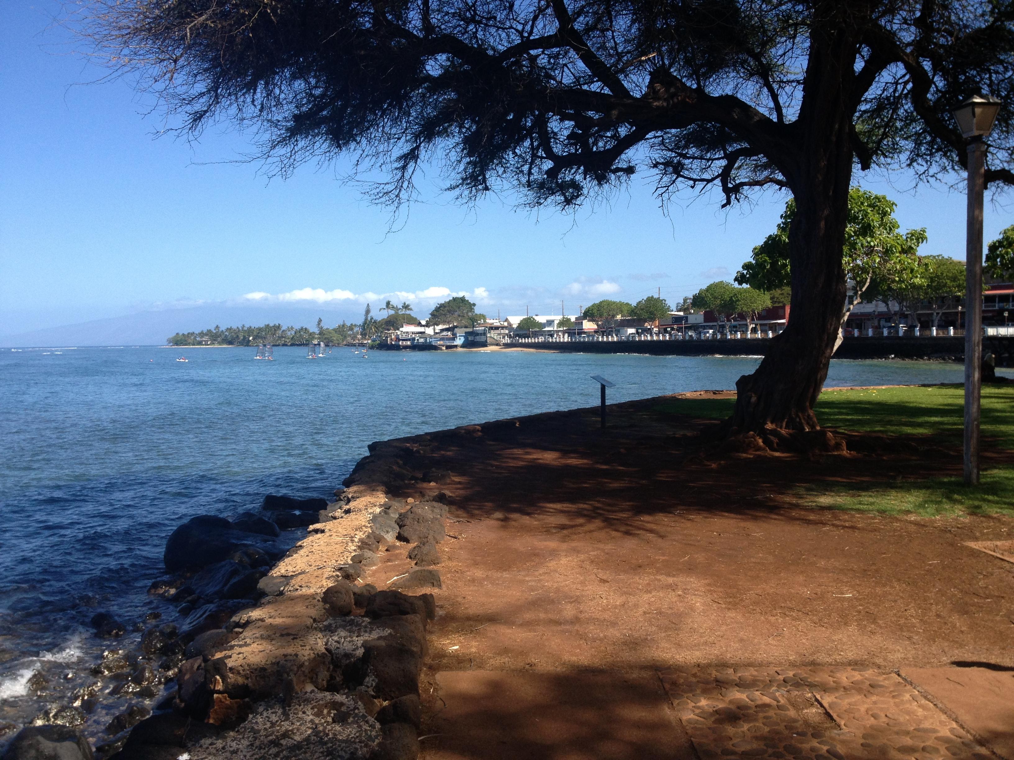Lahaina Harbor Seawall