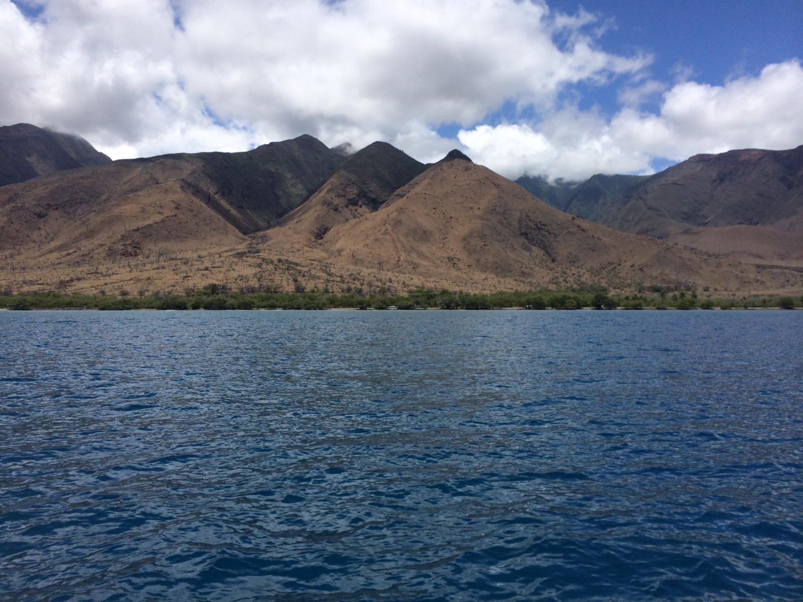 Oceanshot Papalaua