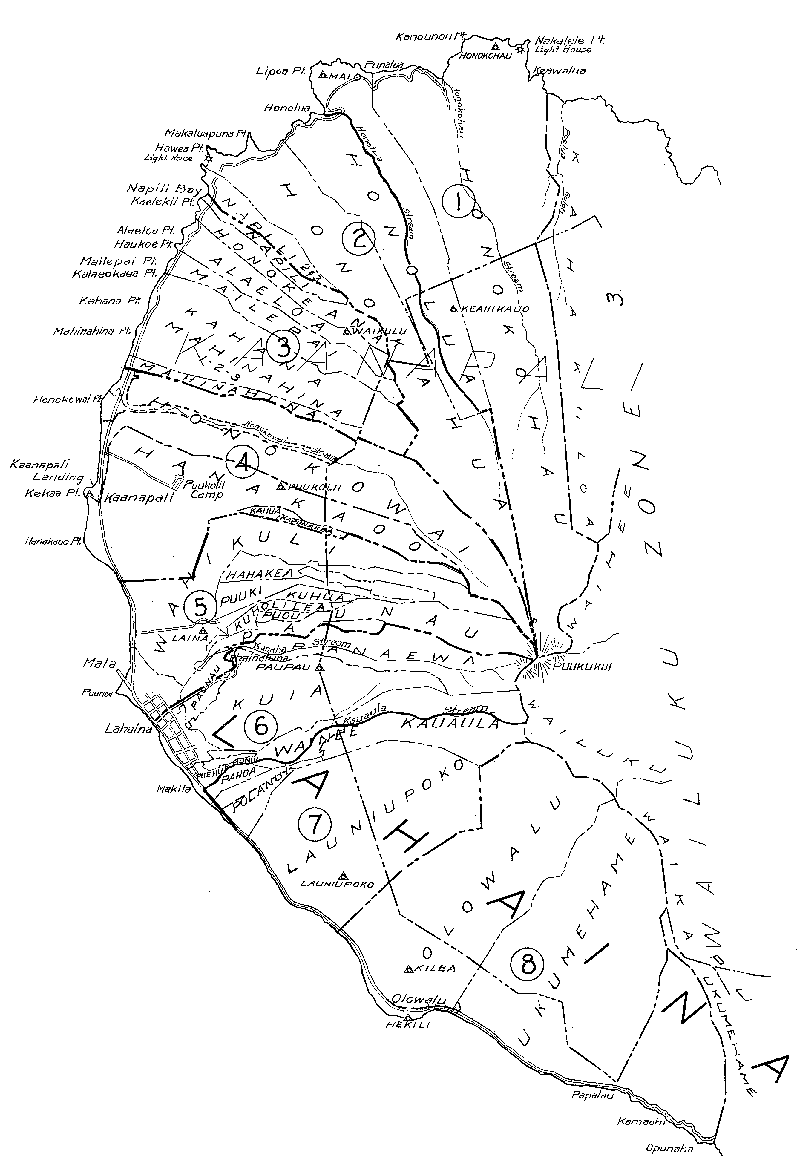 Tax Map for West Maui
